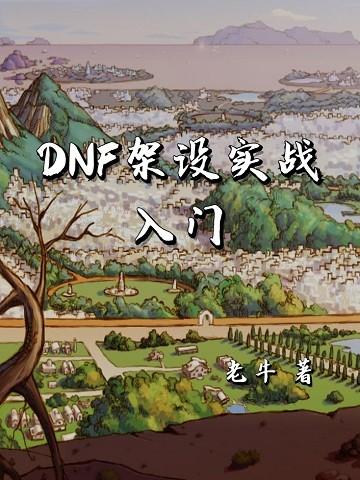 DNF 架设实战入门
